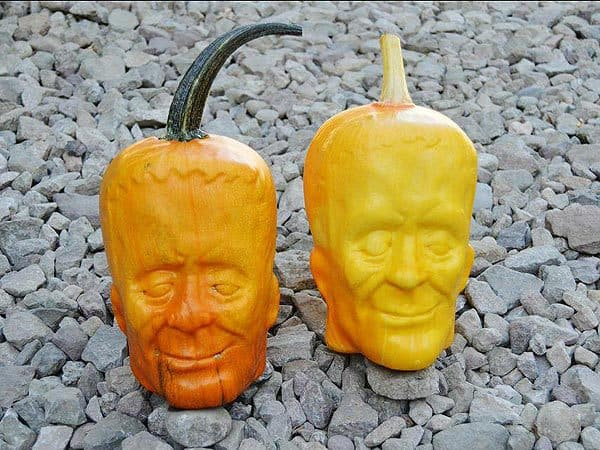A Farmer Has Found a Way to Grow Pumpkins That Look Just Like Frankenstein's Monster
