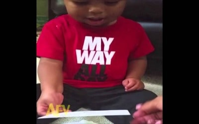 """Li'l Dude Can't Stop Laughing at the Word """"Donkey"""""""